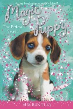 The Perfect Secret (Paperback)