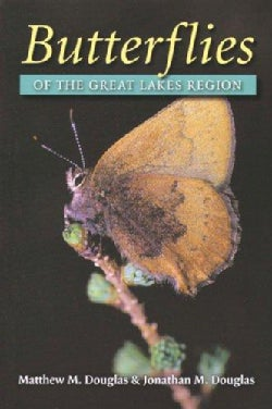 Butterflies Of The Great Lakes Region (Paperback)