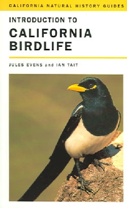 Introduction To California Birdlife