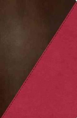 NKJV Study Bible: New King James Version, Rich Raspberry Rich Mahogany Leathersoft: Full Color Edition (Paperback)