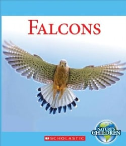 Falcons (Hardcover)
