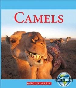 Camels (Hardcover)
