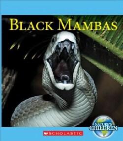 Black Mambas (Paperback)
