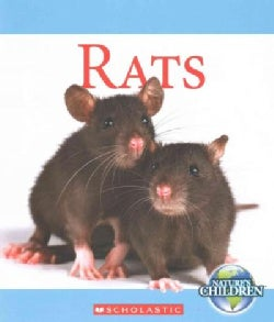 Rats (Paperback)