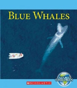 Blue Whales (Hardcover)