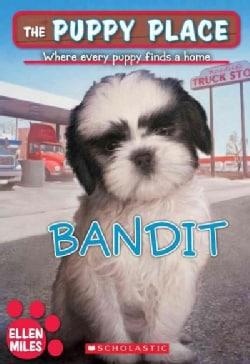 Bandit (Paperback)