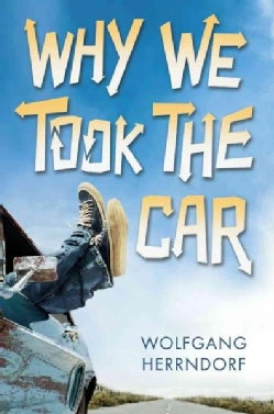 Why We Took the Car (Hardcover)