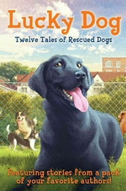 Lucky Dog: Twelve Tales of Rescued Dogs (Hardcover)