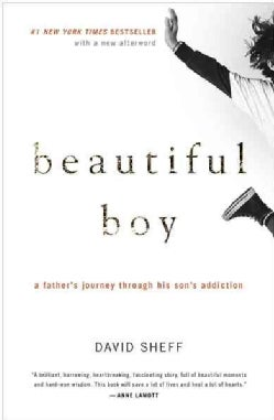 Beautiful Boy: A Father's Journey Through His Son's Addiction (Paperback)