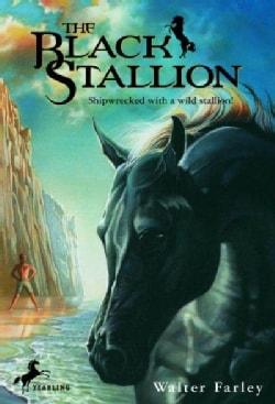 The Black Stallion (Paperback)