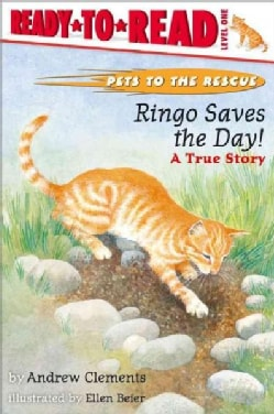 Ringo Saves the Day!: A True Story (Paperback)