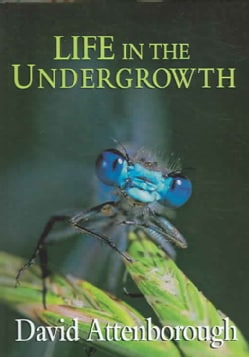Life in the Undergrowth (Hardcover)