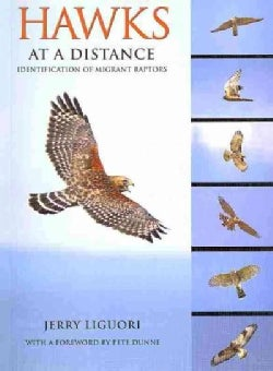 Hawks at a Distance: Identification of Migrant Raptors (Paperback)