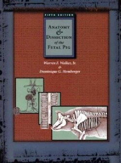 Anatomy & Dissection of the Fetal Pig (Paperback)