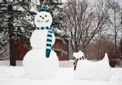 Snowman and Snow Dog (Cards)