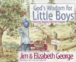 God's Wisdom for Little Boys: Character-Building Fun from Proverbs (Hardcover)