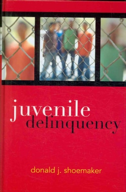 Juvenile Delinquency (Hardcover)
