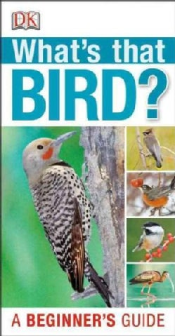 What's That Bird? (Paperback)