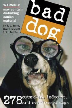 Bad Dog (Paperback)