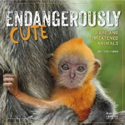 Endangerously Cute 2017 Calendar (Calendar)