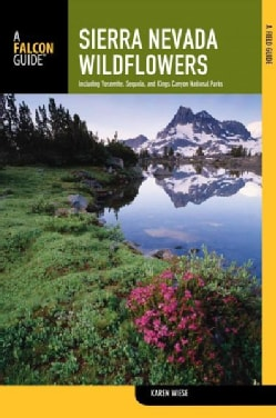 Sierra Nevada Wildflowers: A Field Guide to Common Wildflowers and Shrubs of the Sierra Nevada, Including Yosemit... (Paperback)