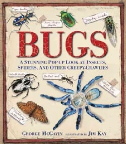 Bugs: A Stunning Pop-Up Look at Insects, Spiders, and Other Creepy-Crawlies (Hardcover)