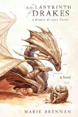 In the Labyrinth of Drakes (Paperback)