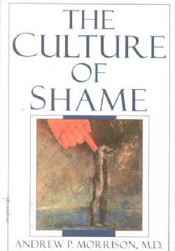 The Culture of Shame (Paperback)