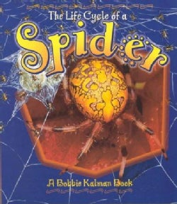 The Life Cycle of a Spider (Paperback)