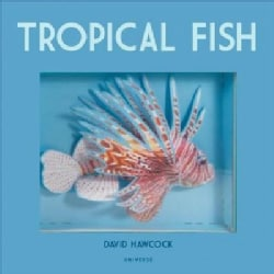 Tropical Fish: Pop-up (Hardcover)