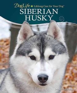 Siberian Husky (Hardcover)