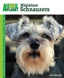 Miniature Schnauzers (Paperback)