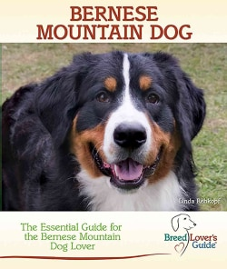Bernese Mountain Dog: A Practical Guide for the Bernese Mountain Dog Lover (Hardcover)
