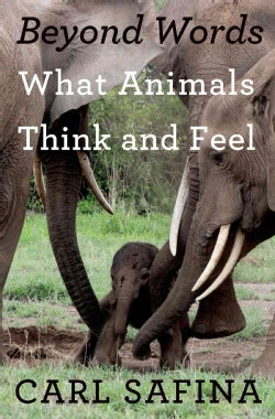Beyond Words: What Animals Think and Feel (Hardcover)
