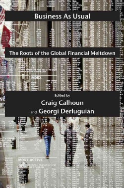 Business As Usual: The Roots of the Global Financial Meltdown (Paperback)