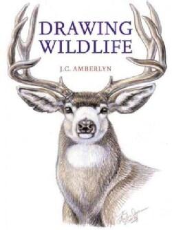 Drawing Wildlife (Paperback)