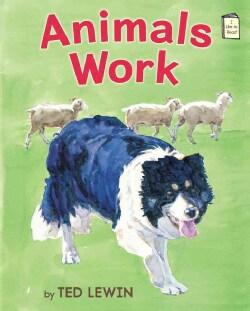 Animals Work (Hardcover)