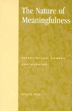 The Nature of Meaningfulness: Representing, Powers, and Meaning (Paperback)
