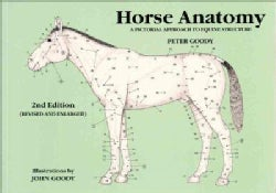Horse Anatomy: A Pictorial Approach to Equine Structure (Paperback)