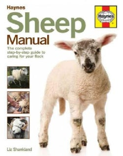 Haynes Sheep Manual: The Step-by-Step Guide to Caring for Your First Flock (Hardcover)