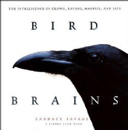 Bird Brains: The Intelligence of Crows, Ravens, Magpies, and Jays (Paperback)