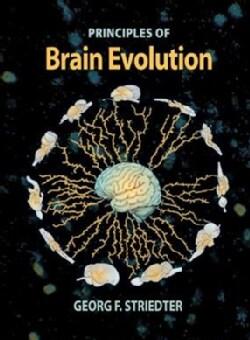 Principles Of Brain Evolution (Hardcover)