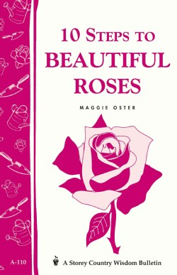 10 Steps to Beautiful Roses (Paperback)