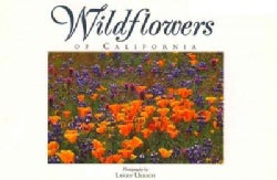 Wildflowers of California (Paperback)
