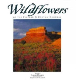 Wildflowers of the Plateau & Canyon Country (Paperback)