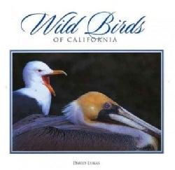 Wild Birds of California (Hardcover)