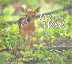 Lost In The Woods: A Photographic Fantasy (Hardcover)