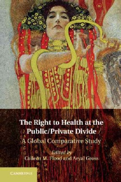 The Right to Health at the Public/Private Divide: A Global Comparative Study (Hardcover)