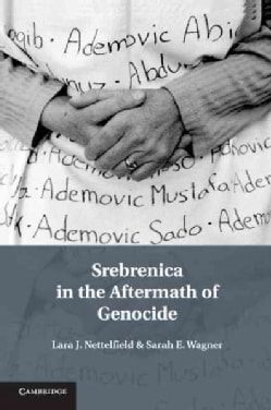 Srebrenica in the Aftermath of Genocide (Paperback)