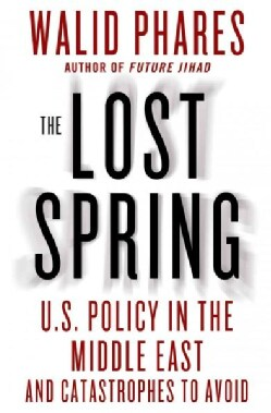 The Lost Spring: U.S. Policy in the Middle East and Catastrophes to Avoid (Hardcover)